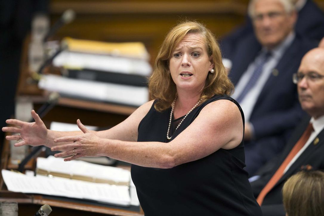 lisa macleod (photo credit: ANDREW FRANCIS WALLACE / TORONTO STAR)
